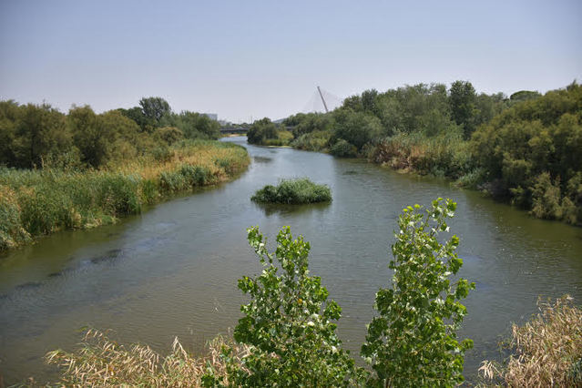 Río Tajo en agosto