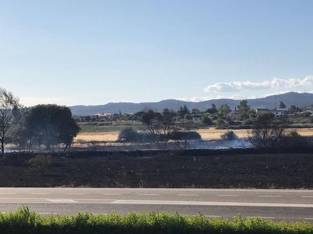 Extinguido el incendio forestal declarado en Pepino