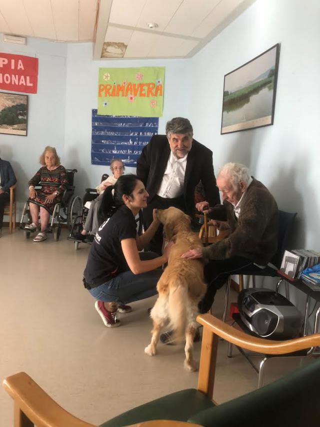 La Residencia de Mayores 'Virgen del Prado' de Talavera participa en el Programa de Terapia Asistida con Perros