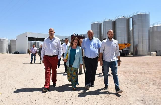 Castilla-La Mancha espera resolver en septiembre la convocatoria de ayudas de restructuración del viñedo