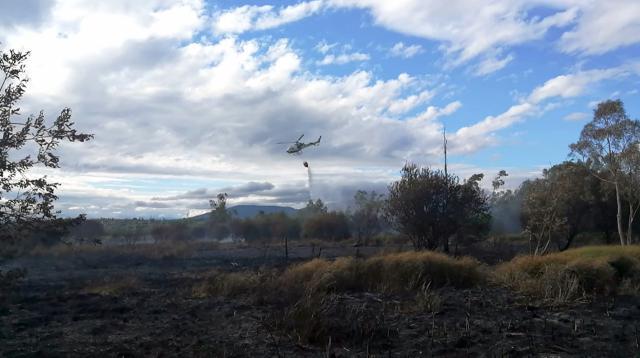 Declarado un incendio en el vivero de la CHT en el embalse de Cazalegas