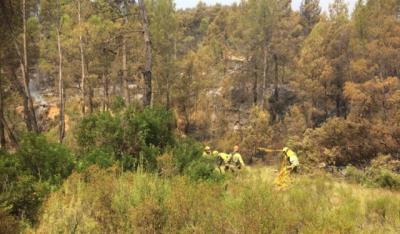 Perimetrado en su totalidad el incendio de Yeste